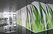 Wanddesign Tapete